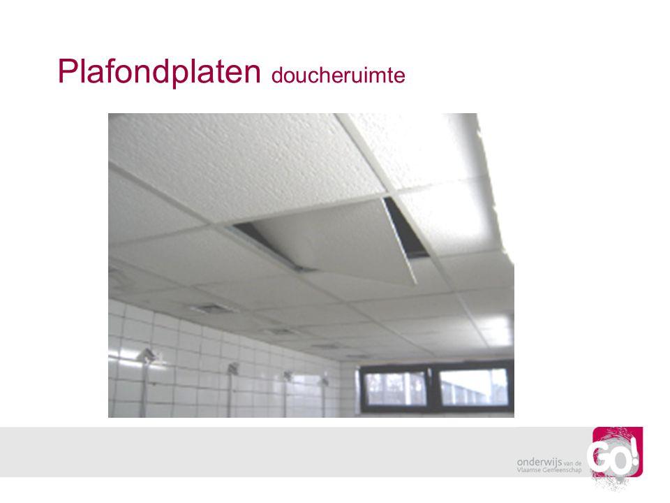 Plafondplaten doucheruimte
