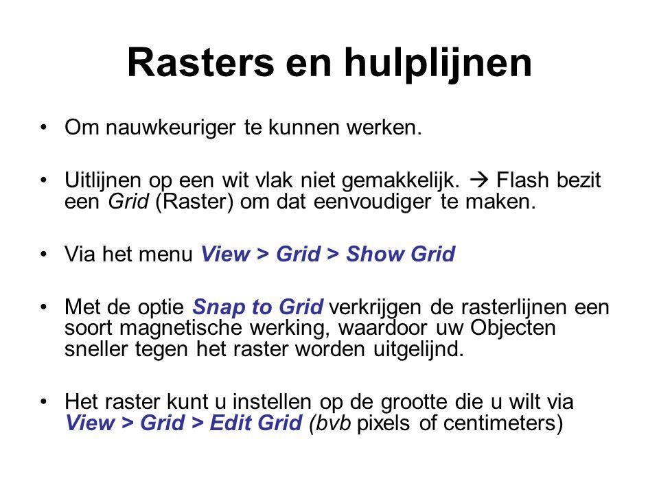Rasters en hulplijnen Om nauwkeuriger te kunnen werken.