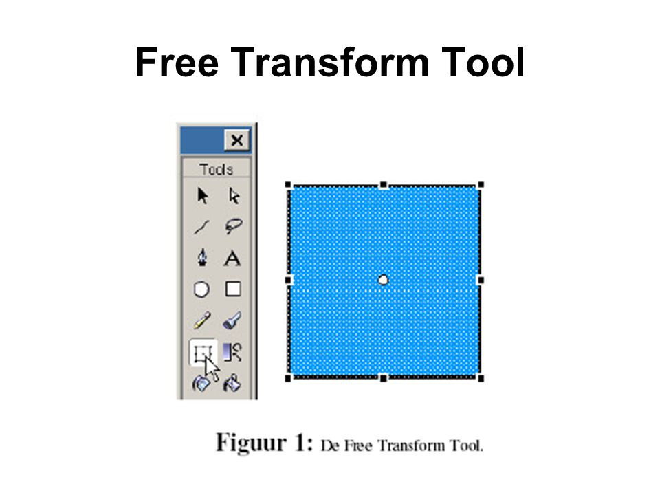 Free Transform Tool