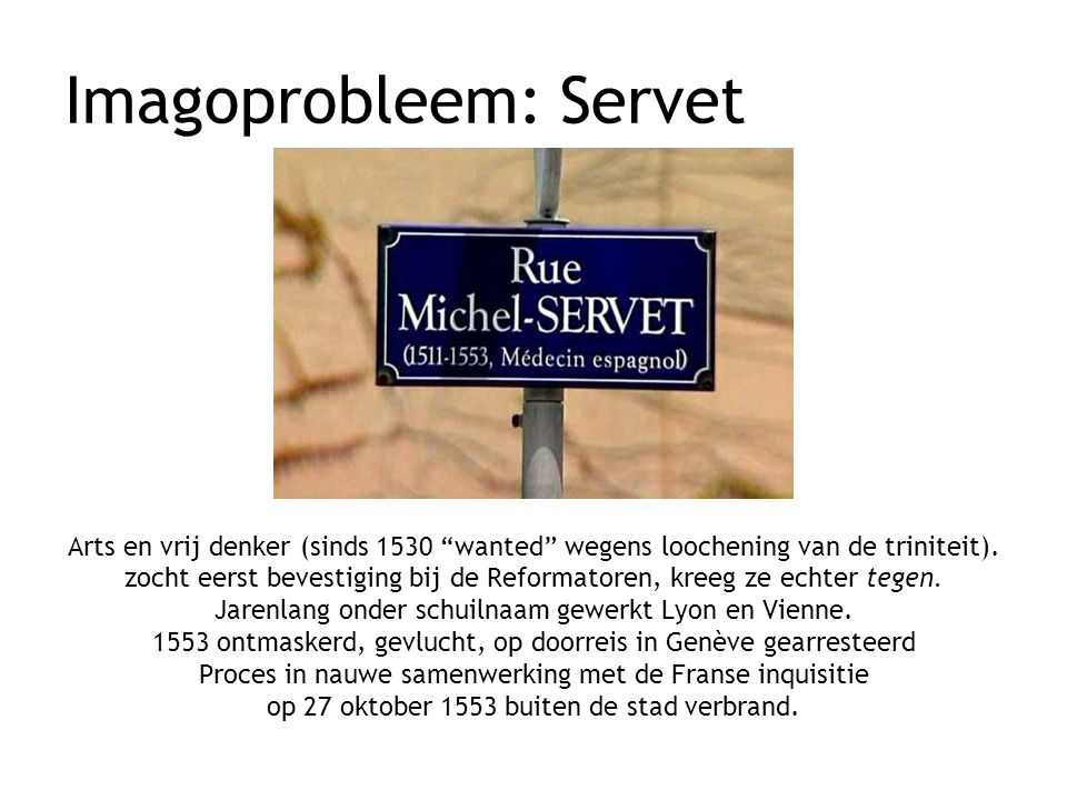 Imagoprobleem: Servet