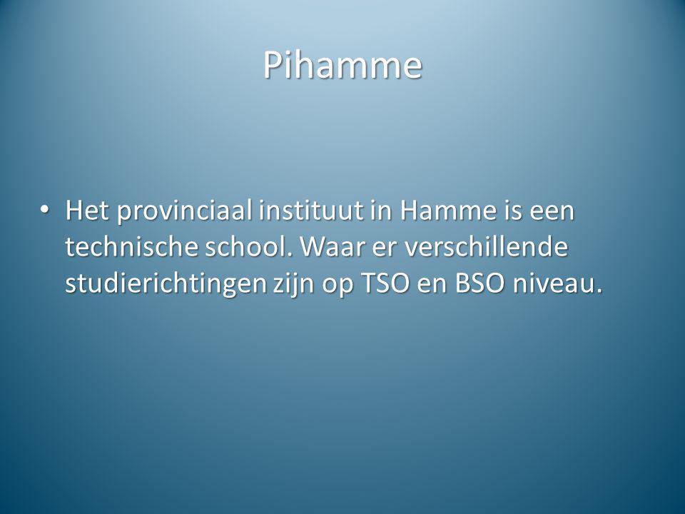 Pihamme Het provinciaal instituut in Hamme is een technische school.