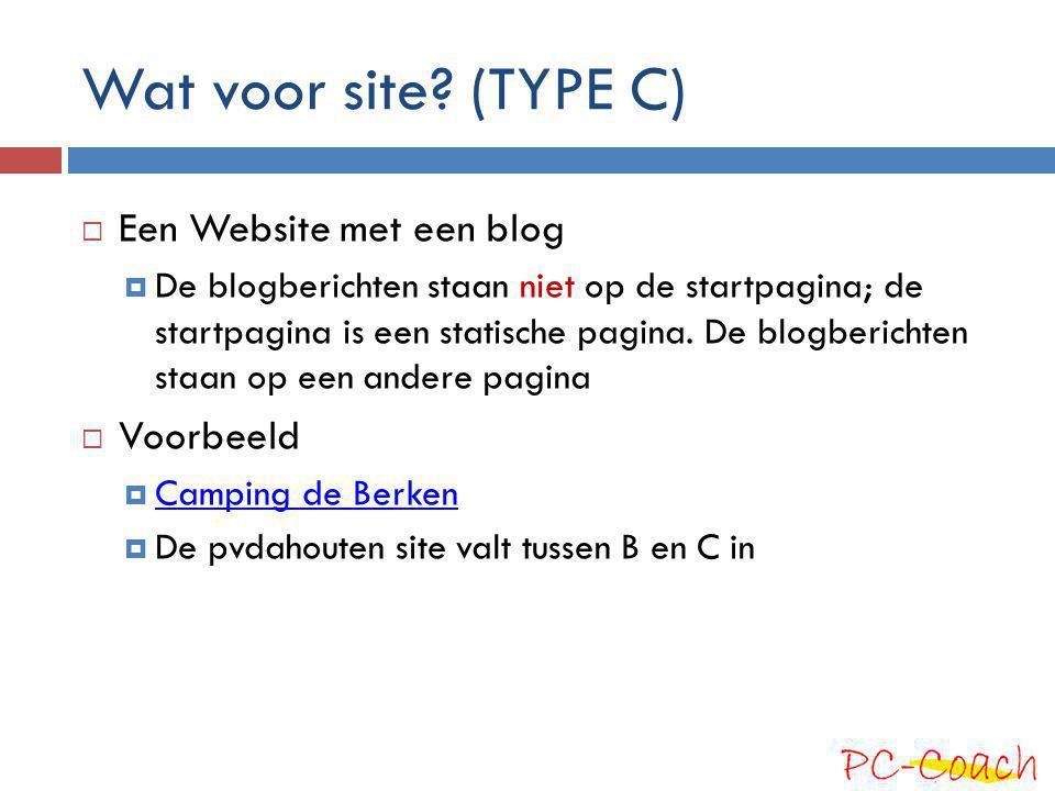 Wat voor site (TYPE C) Een Website met een blog Voorbeeld