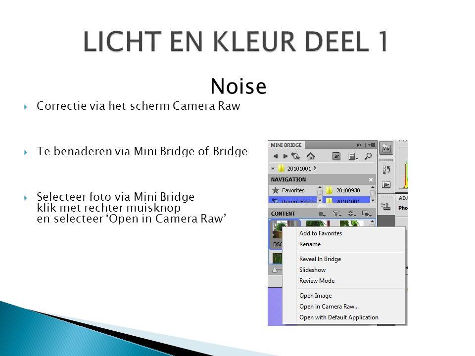 LICHT EN KLEUR DEEL 1 Noise Correctie via het scherm Camera Raw