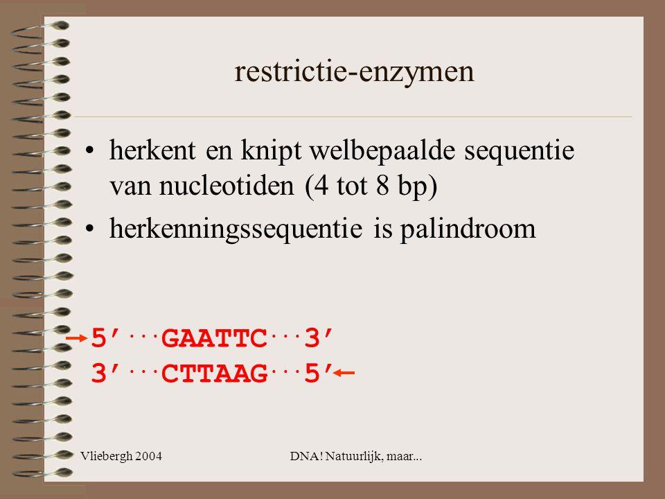 restrictie-enzymen herkent en knipt welbepaalde sequentie van nucleotiden (4 tot 8 bp) herkenningssequentie is palindroom.
