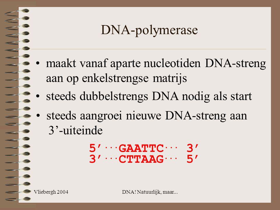 DNA-polymerase maakt vanaf aparte nucleotiden DNA-streng aan op enkelstrengse matrijs. steeds dubbelstrengs DNA nodig als start.