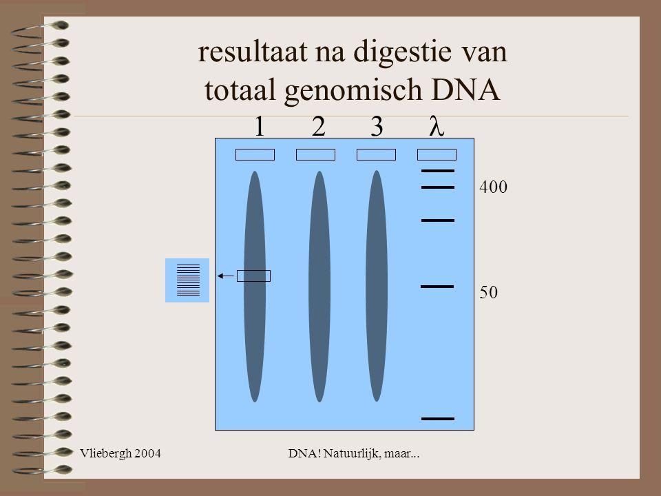 resultaat na digestie van totaal genomisch DNA
