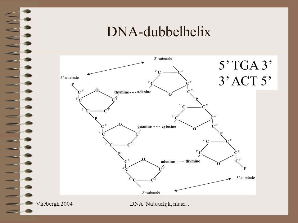 DNA-dubbelhelix 5' TGA 3' 3' ACT 5' Vliebergh 2004