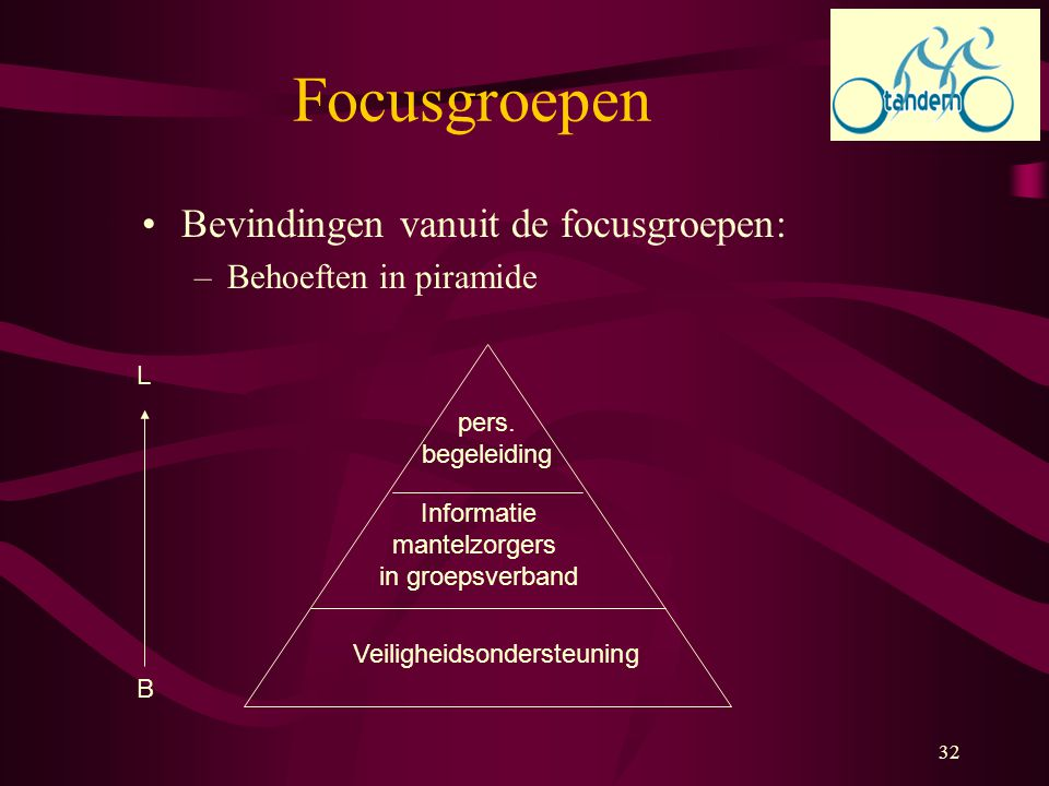 Focusgroepen Bevindingen vanuit de focusgroepen: Behoeften in piramide