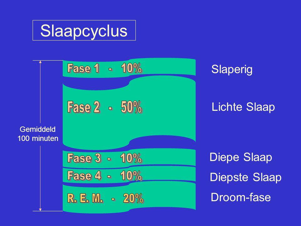 Slaapcyclus Fase 1 - 10% Fase 2 - 50% Fase 3 - 10% Fase 4 - 10%