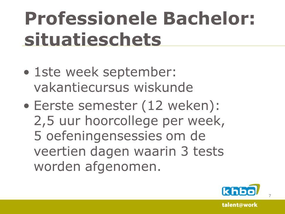 Professionele Bachelor: situatieschets