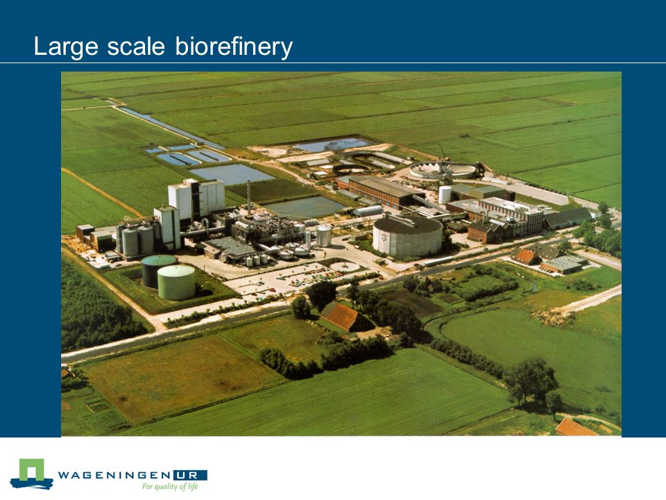 Large scale biorefinery