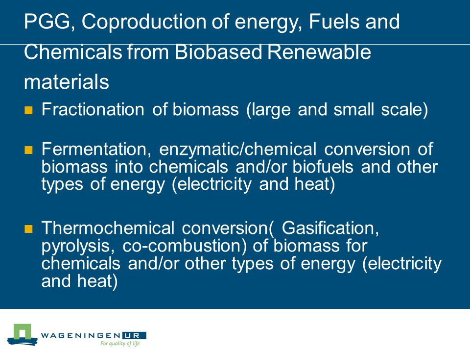 PGG, Coproduction of energy, Fuels and Chemicals from Biobased Renewable materials