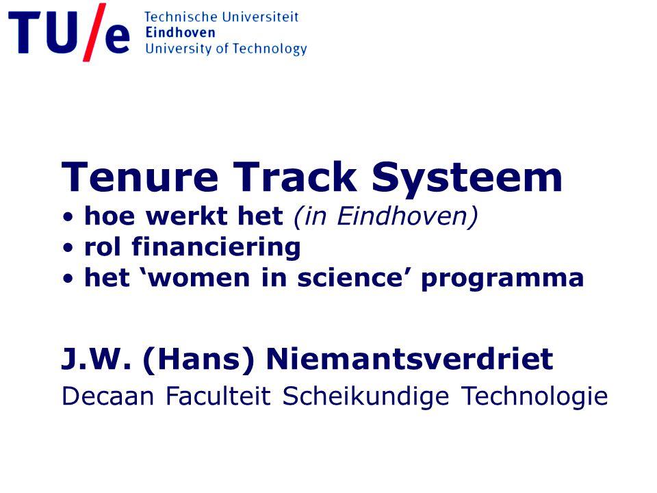 Tenure Track Systeem J.W. (Hans) Niemantsverdriet