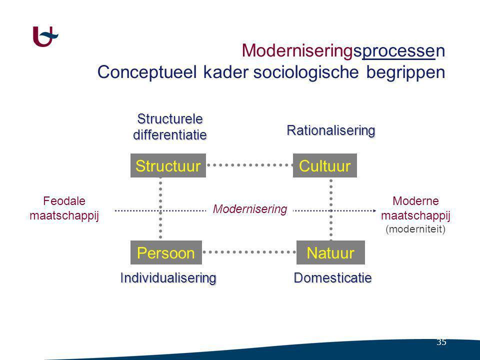 Moderniseringsprocessen Conceptueel kader en paradoxen