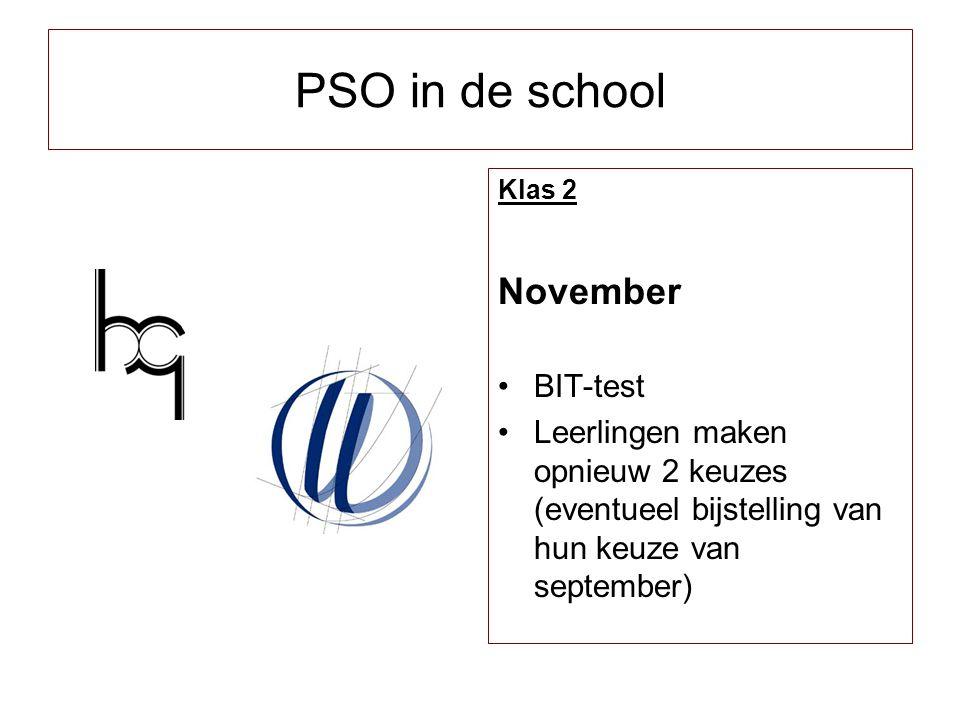 PSO in de school November BIT-test