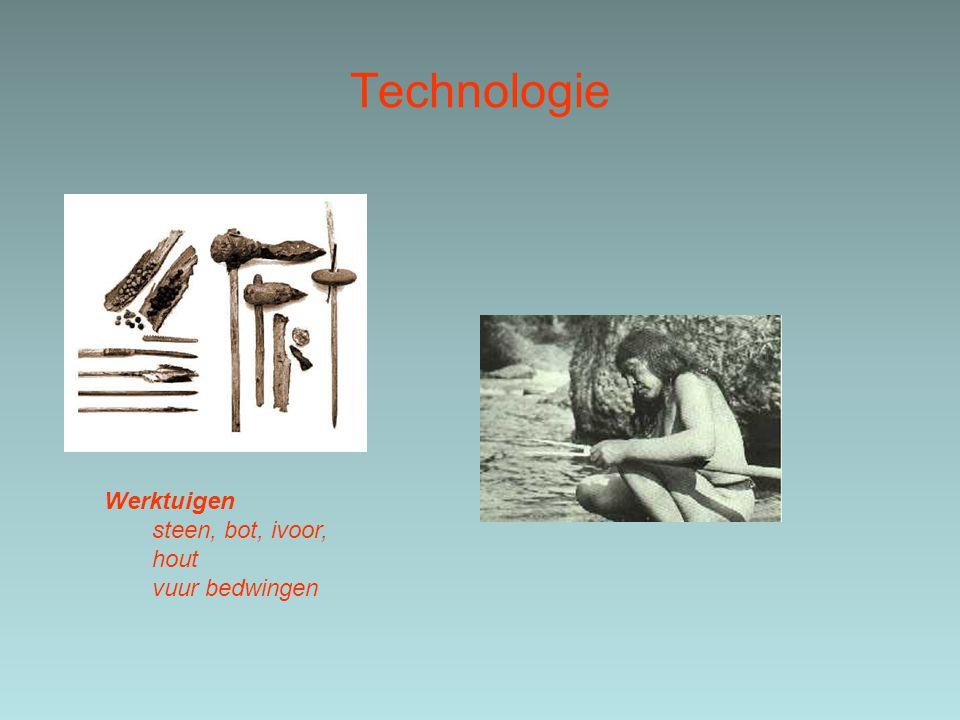 Technologie Werktuigen steen, bot, ivoor, hout vuur bedwingen