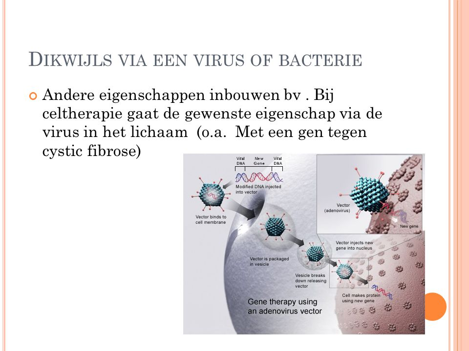 Dikwijls via een virus of bacterie