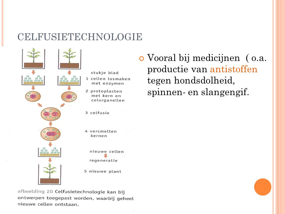 celfusietechnologie Vooral bij medicijnen ( o.a.