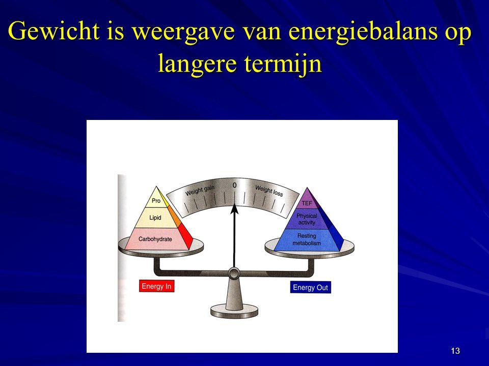 Gewicht is weergave van energiebalans op langere termijn