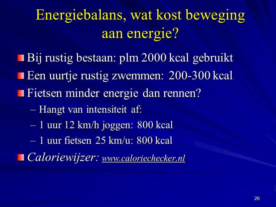 Energiebalans, wat kost beweging aan energie
