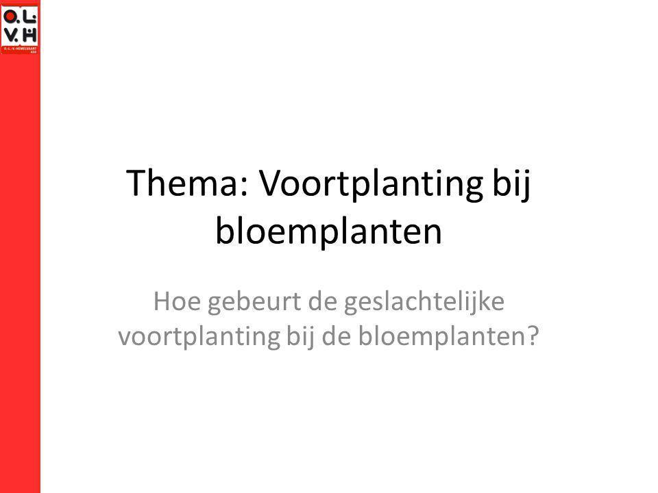 Thema: Voortplanting bij bloemplanten