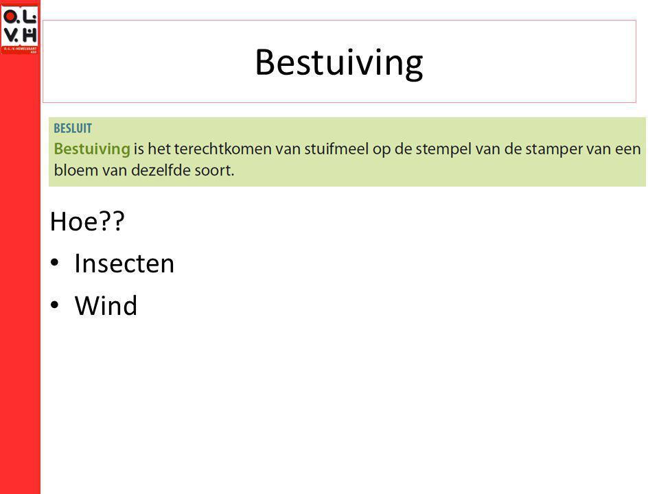 Bestuiving Hoe Insecten Wind