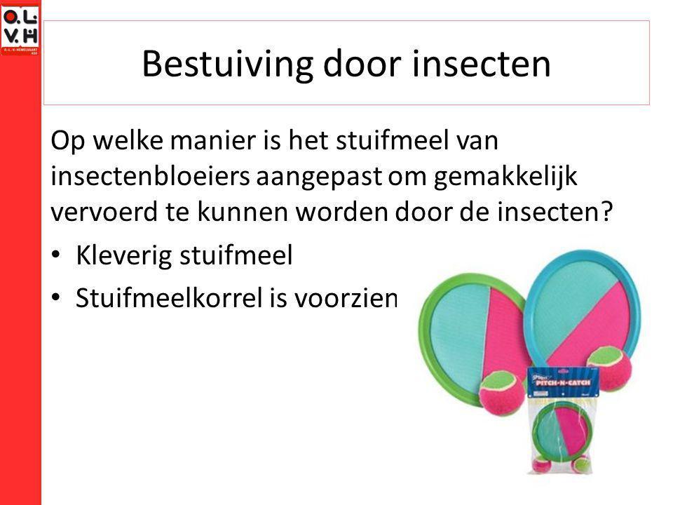 Bestuiving door insecten