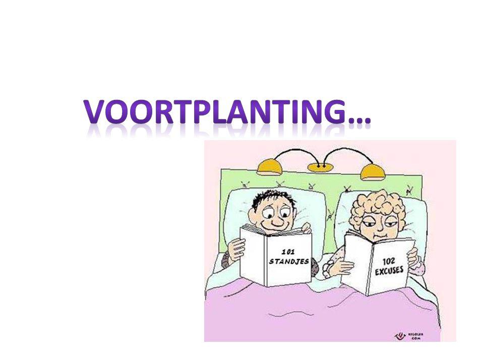 Voortplanting…