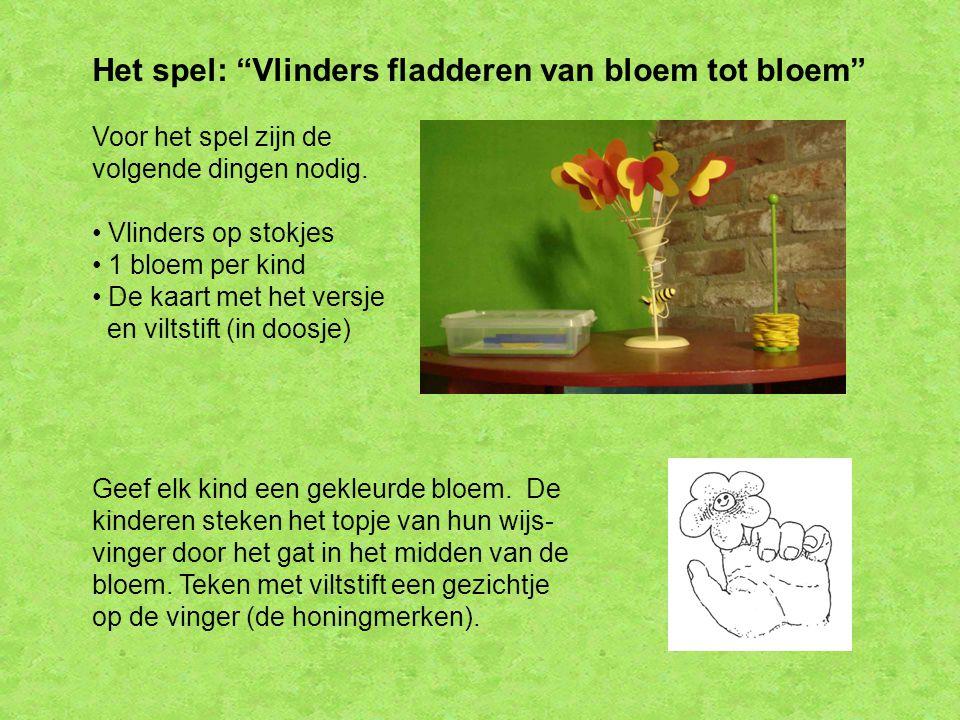 Het spel: Vlinders fladderen van bloem tot bloem