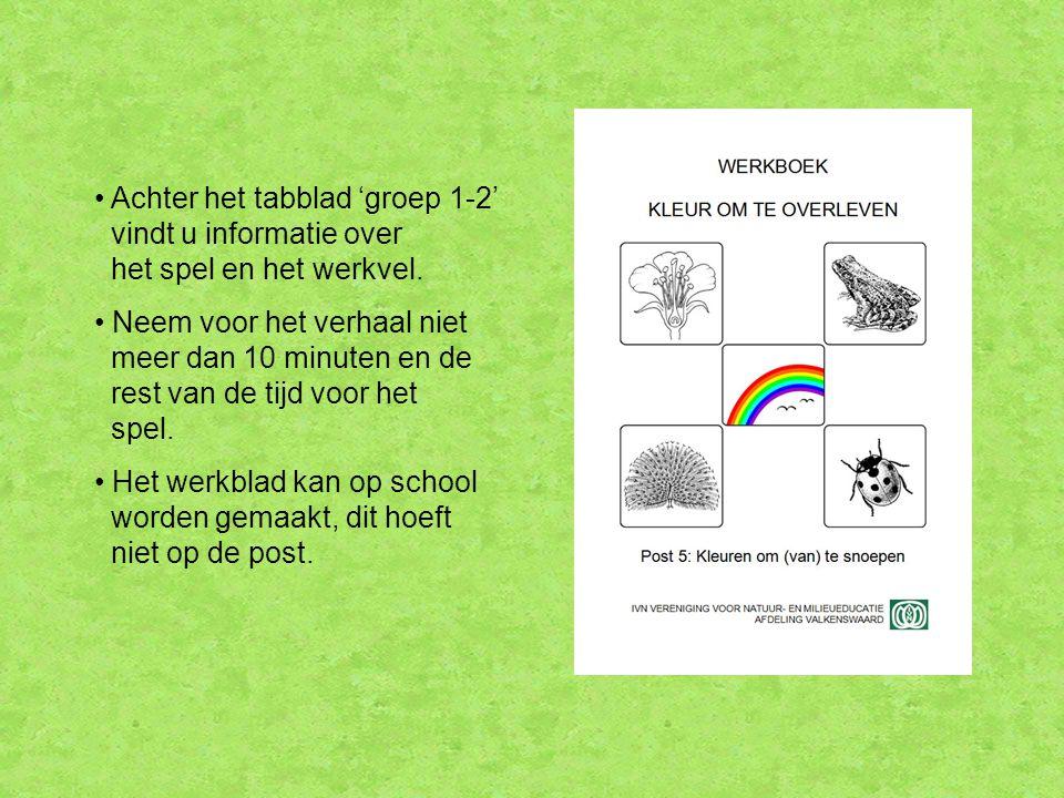 Achter het tabblad 'groep 1-2' vindt u informatie over het spel en het werkvel.