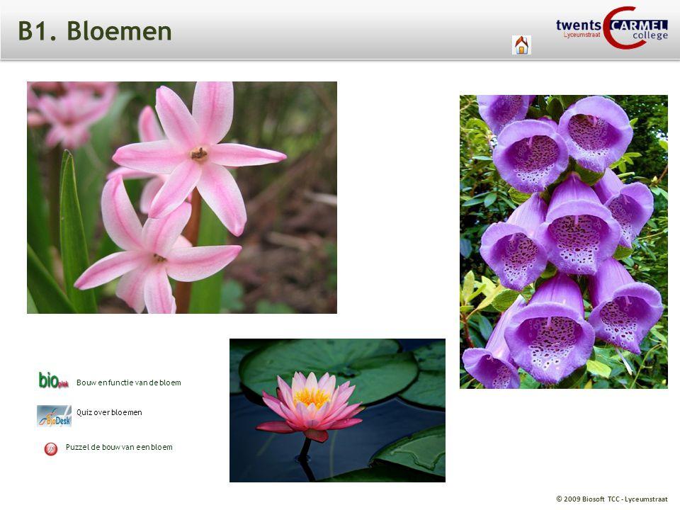 B1. Bloemen Bouw en functie van de bloem Quiz over bloemen