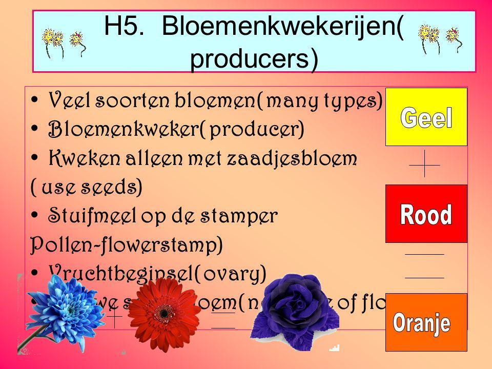 H5. Bloemenkwekerijen( producers)