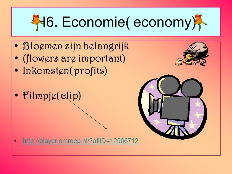 H6. Economie( economy) Bloemen zijn belangrijk (flowers are important)