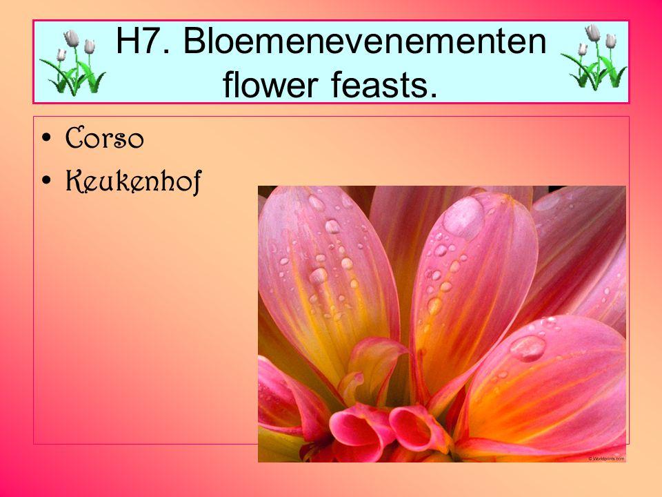 H7. Bloemenevenementen flower feasts.