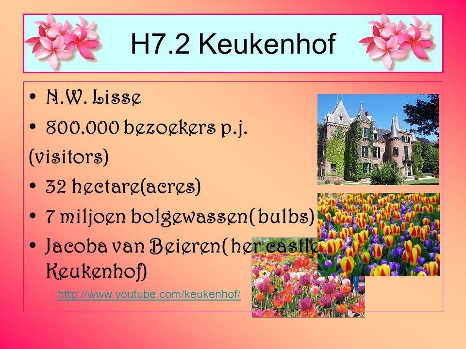 H7.2 Keukenhof N.W. Lisse 800.000 bezoekers p.j. (visitors)