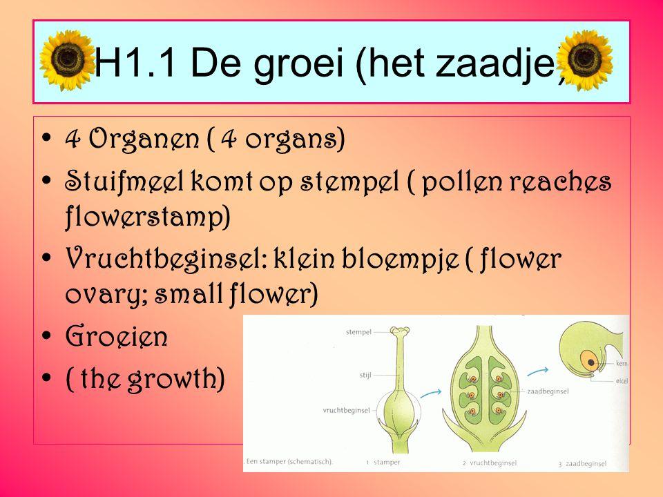 H1.1 De groei (het zaadje) 4 Organen ( 4 organs)