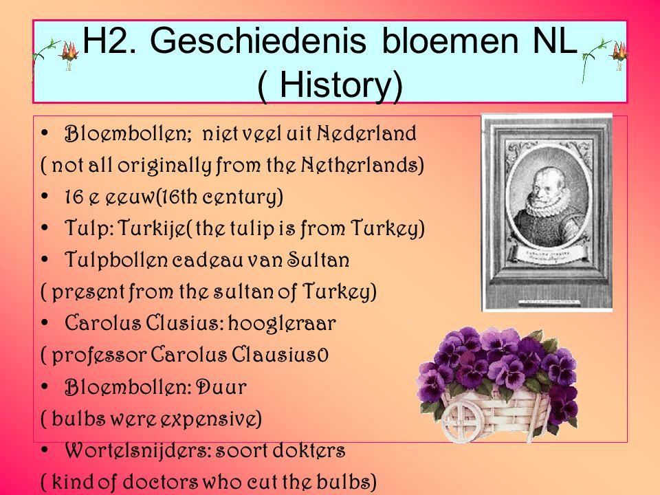 H2. Geschiedenis bloemen NL ( History)