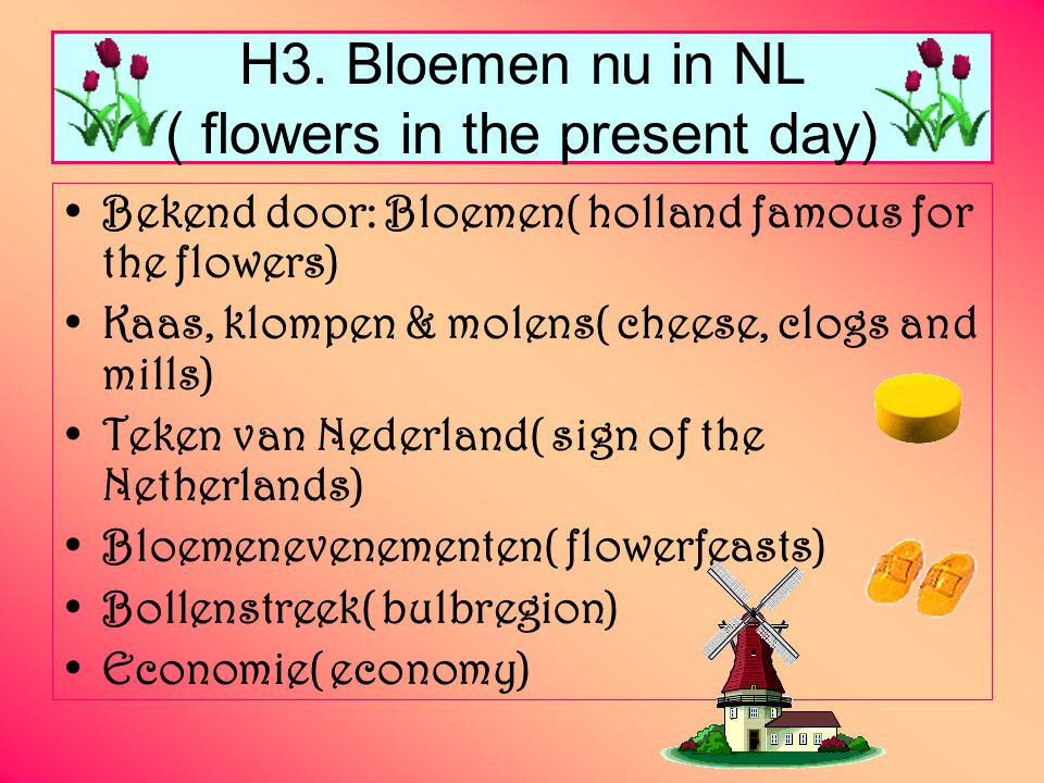 H3. Bloemen nu in NL ( flowers in the present day)