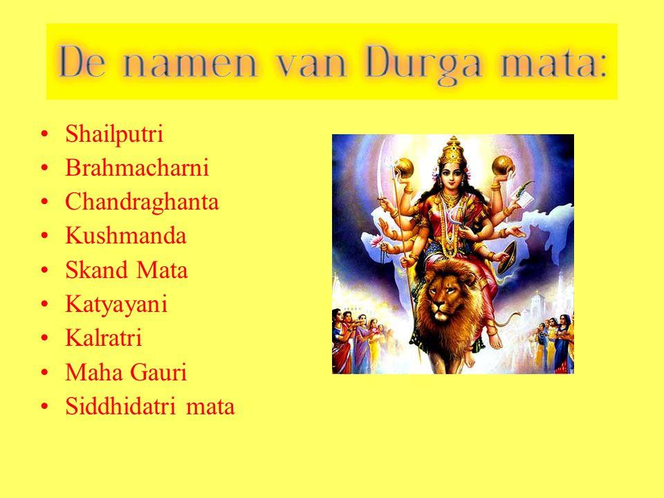 Shailputri Brahmacharni. Chandraghanta. Kushmanda. Skand Mata. Katyayani. Kalratri. Maha Gauri.