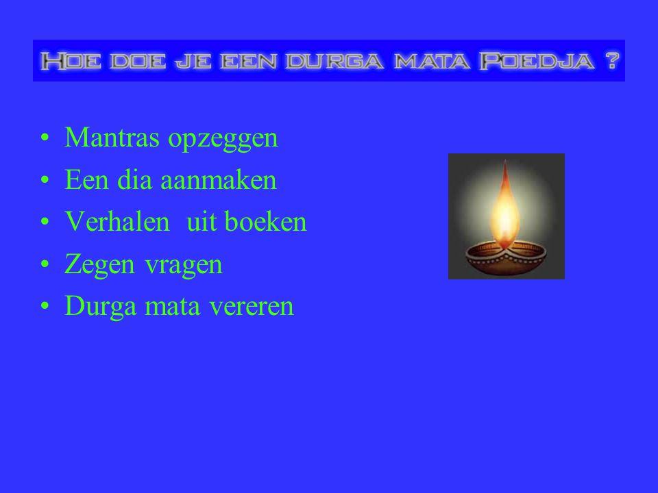 Mantras opzeggen Een dia aanmaken Verhalen uit boeken Zegen vragen Durga mata vereren