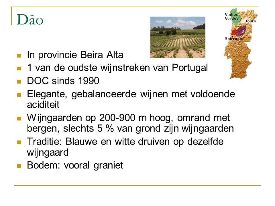 Dão In provincie Beira Alta 1 van de oudste wijnstreken van Portugal