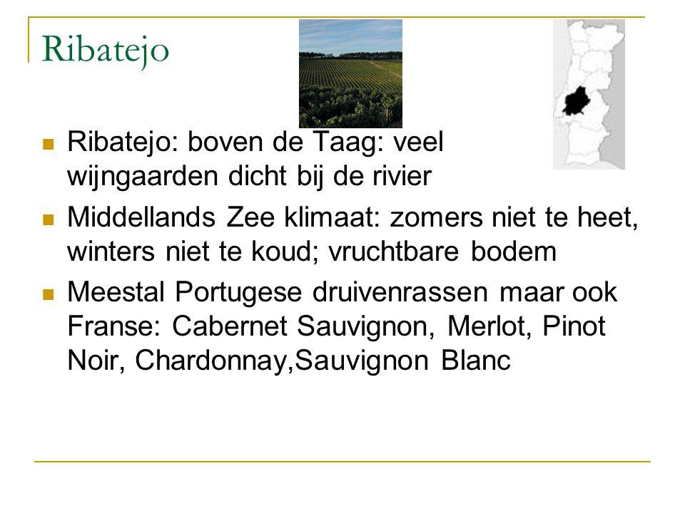 Ribatejo Ribatejo: boven de Taag: veel wijngaarden dicht bij de rivier