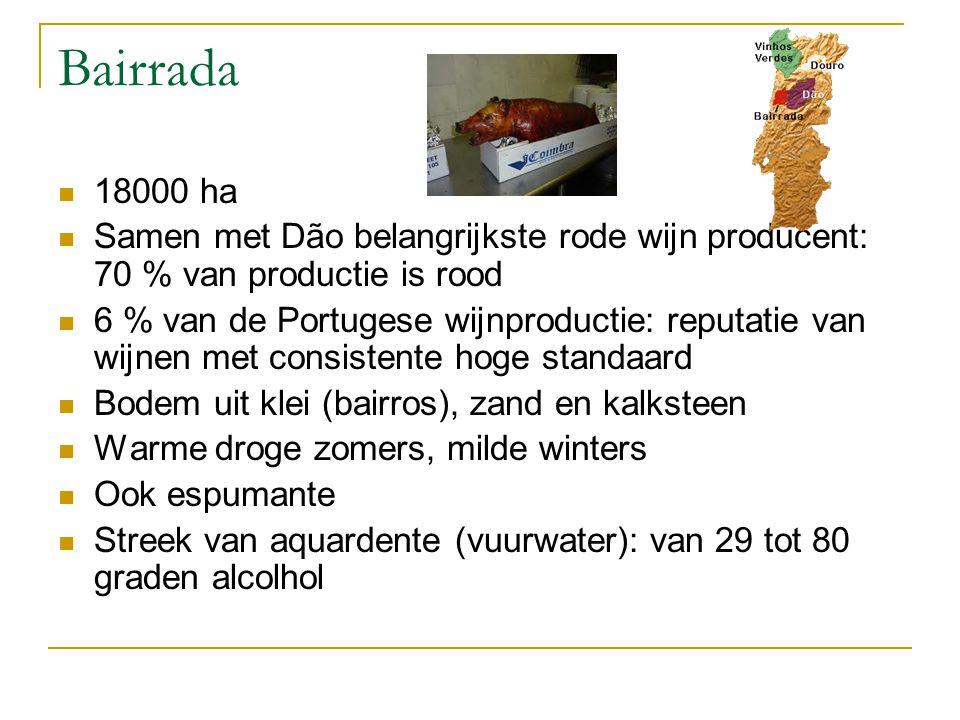 Bairrada 18000 ha. Samen met Dão belangrijkste rode wijn producent: 70 % van productie is rood.
