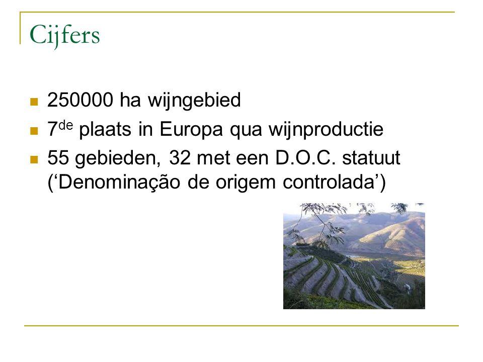 Cijfers 250000 ha wijngebied 7de plaats in Europa qua wijnproductie