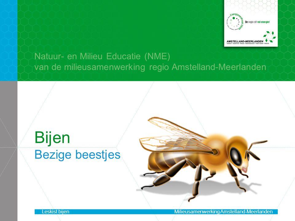 Bijen Bezige beestjes Natuur- en Milieu Educatie (NME)