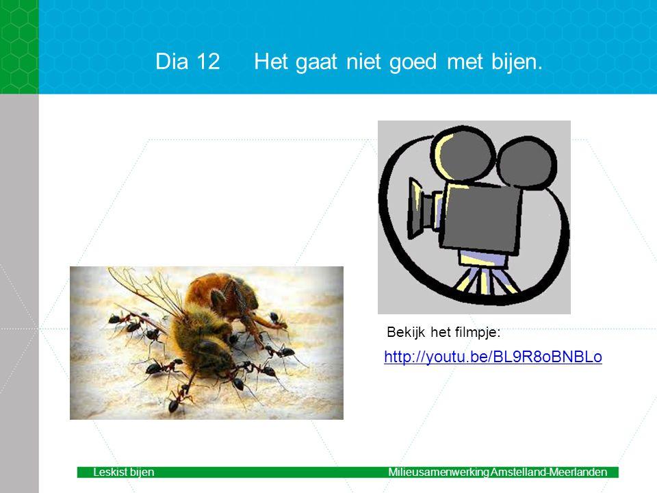 Dia 12 Het gaat niet goed met bijen.