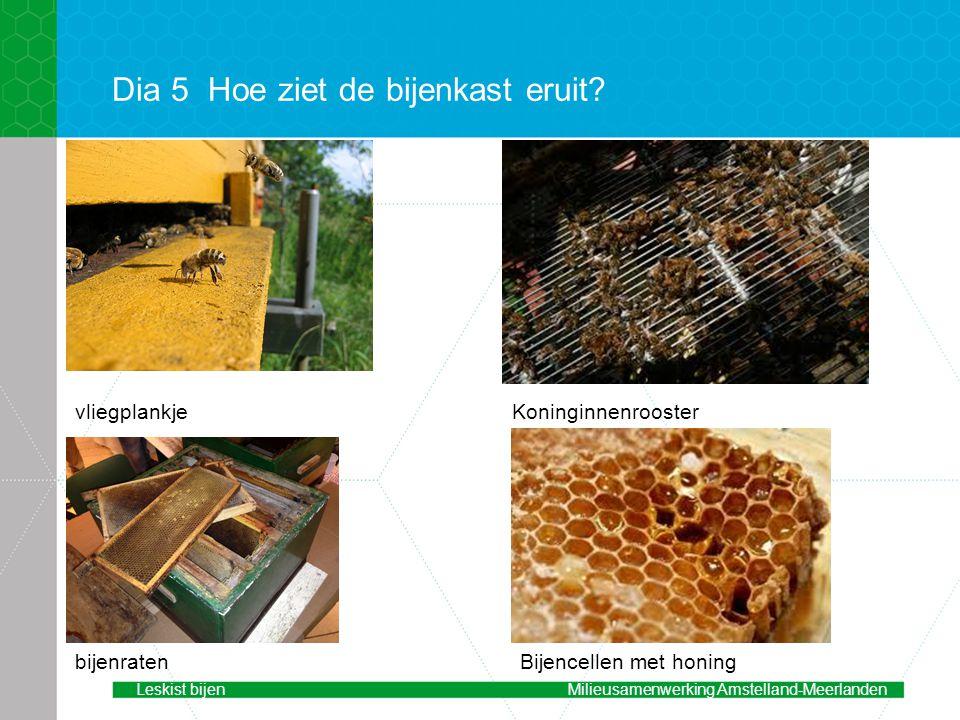 Dia 5 Hoe ziet de bijenkast eruit