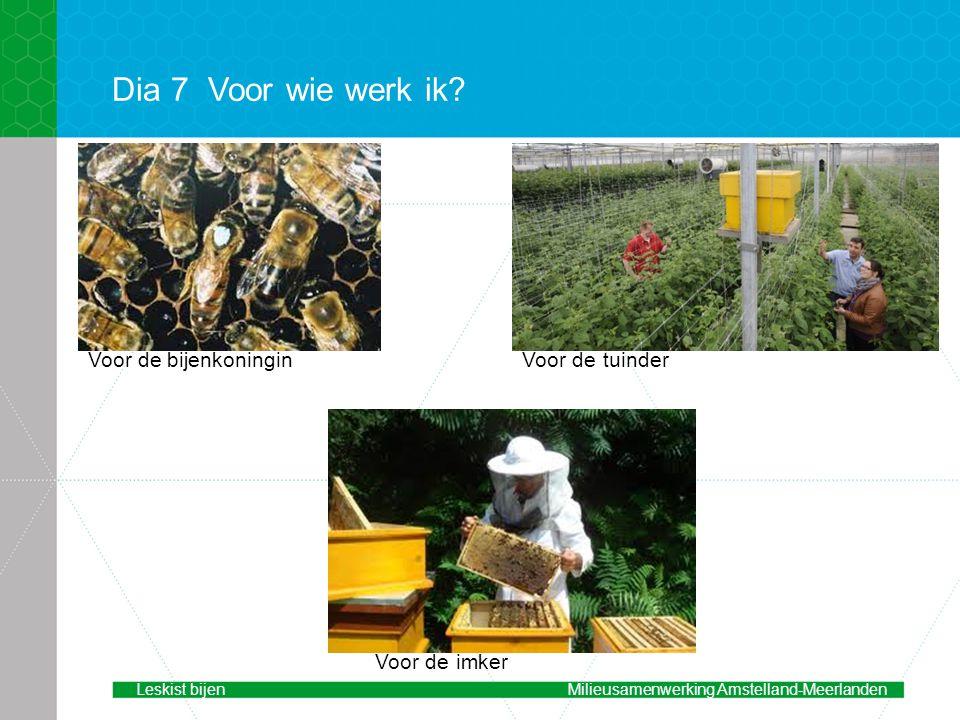 Dia 7 Voor wie werk ik Voor de bijenkoningin Voor de tuinder