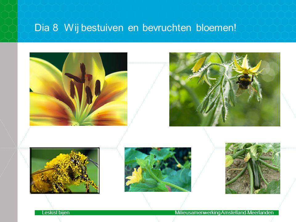 Dia 8 Wij bestuiven en bevruchten bloemen!