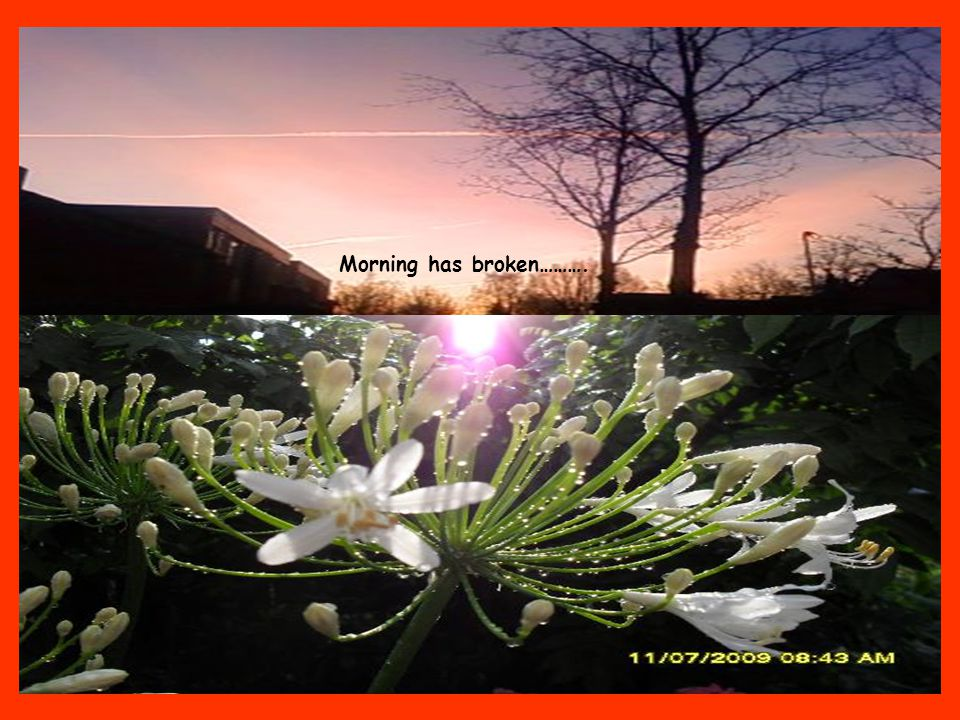 Morning has broken……….